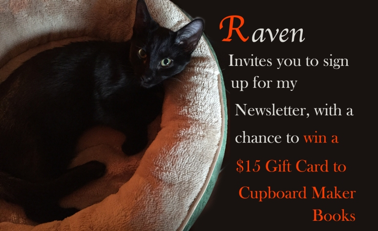 Black cat in a pet bed advertising a newsletter sign-up