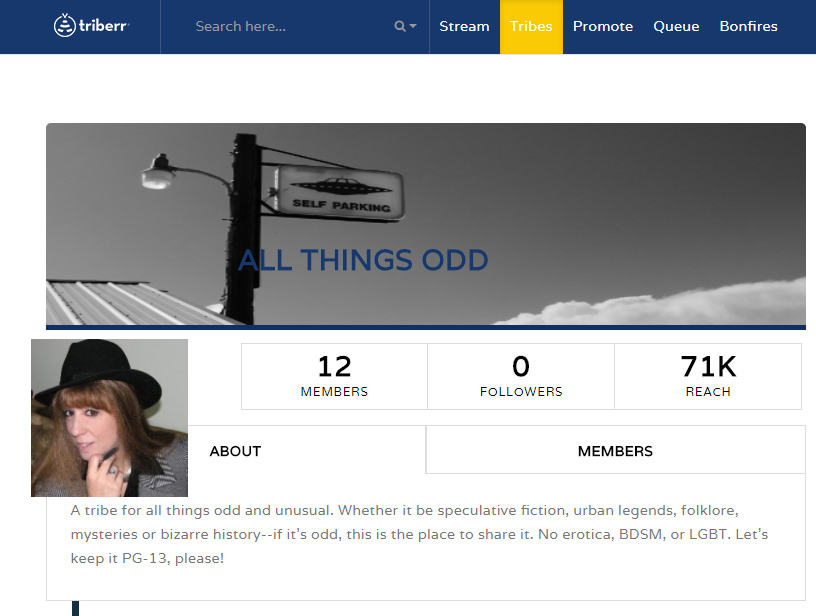 Profile page of All Things Odd tribe on Triberr