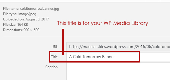 close up of wordpress media library title section