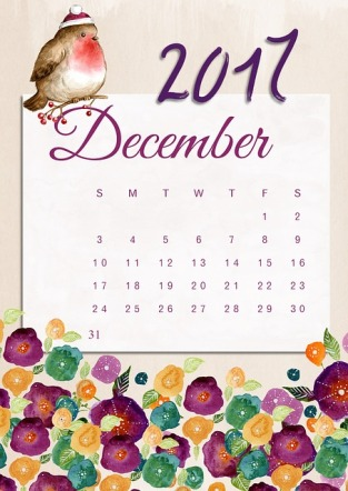 December 2017, Year in Review