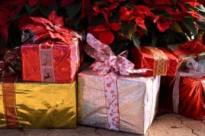 colorful Christmas presents with poinsettia plants in background