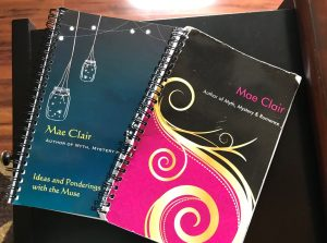 small spiral bound notebooks with colorful covers show use