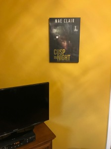 shot of room with flatscreen TV on electric fireplace, book cover canvas on wall