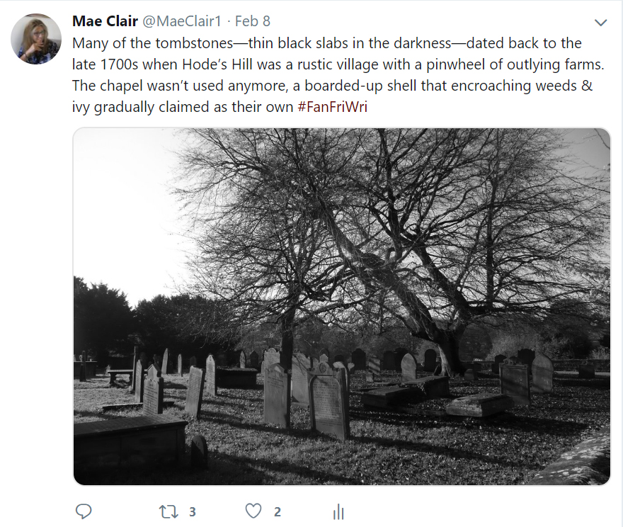 Screenshot of a Tweet made by author Mae Clair