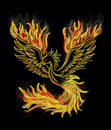 Mythical Phoenix with fiery wings and tail feathers on a black background