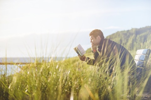 man sitting on bench reading a book. Bench surrounded by tall grasses, sun shining, portion of lake visible in background