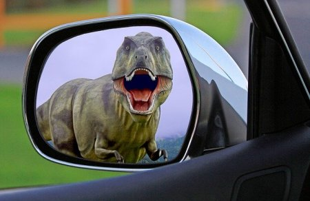 view of a tyrannosaurs rex from the side view mirror of a car